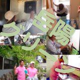 外壁の掃除 株式会社岳陽グリーン