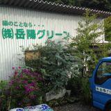 洗面所クリーニング 株式会社岳陽グリーン