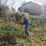 草刈り・芝刈り・除草(機械刈り) 千賀造園