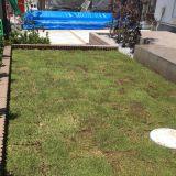 芝張り・芝生の手入れ 園丁 ことぶき