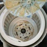 洗濯機・洗濯槽クリーニング フダバ