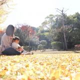 家族写真・記念写真 akari photography