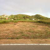 草刈り・芝刈り・除草(機械刈り) ǸINJYA造園