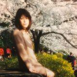 お見合い写真・婚活写真撮影 島田真杜