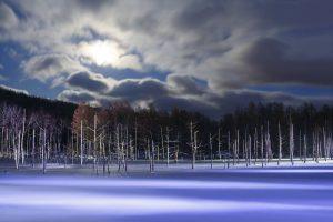 カメラマン 上村孝幸:北海道の大自然が仕事場。写真撮影はもちろんガイドツアーまで幅広く活躍