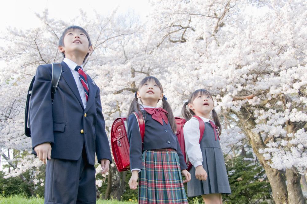 桜の下で入学式写真